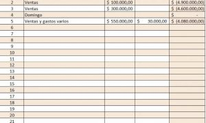 Cómo utilizar el libro fiscal de operaciones diarias