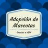 Adopción de mascotas 7