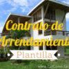 Contrato de arrendamiento de vivienda 10