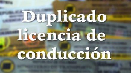 Duplicado del pase en Colombia 4