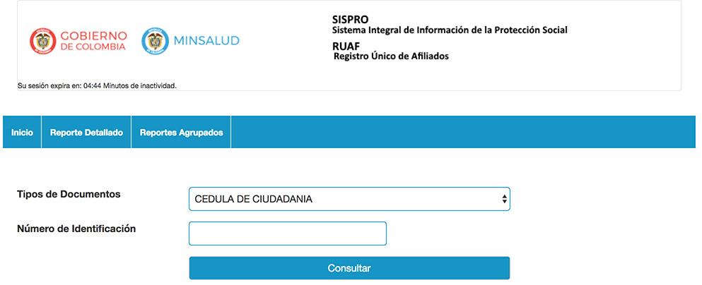 Vista previa del formulario de consulta del RUAF