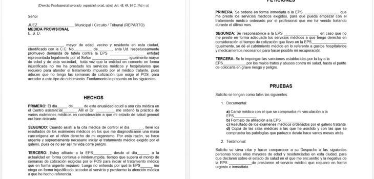 Acción de tutela en Colombia - Plantilla en Word 2