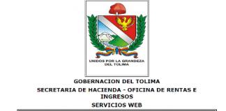 Impuesto vehiculos Tolima