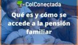 Cómo funciona la pensión familiar