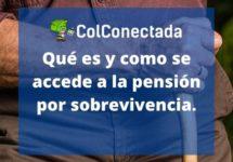 Qué es una pensión por sobrevivencia y cómo obtenerla