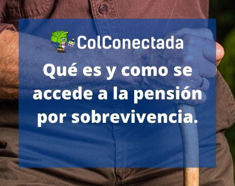 Pensión por sobrevivencia