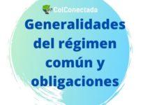 Generalidades del régimen común y obligaciones