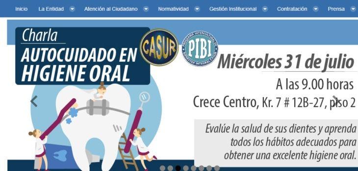 Vista previa del portal web de Casur