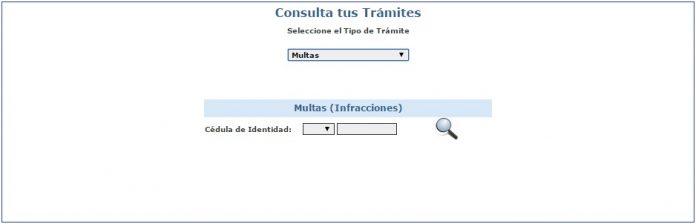 Vista del formulario de consulta de multas