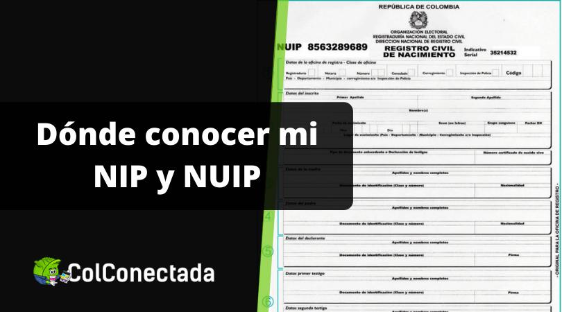 NIP y NUIP: Números de identificación personal 3