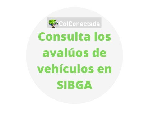 SIBGA: Tabla de avalúos de vehículos en Colombia 5