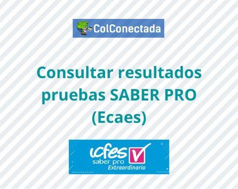 Consultar resultados pruebas SABER PRO (Ecaes)