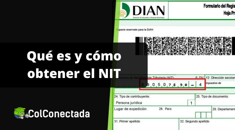 NIT: Número de Identificación Tributaria 3