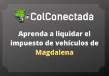 Impuesto vehículos en Magdalena 2020