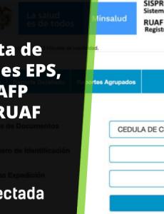 RUAF: Consulta de afiliaciones en salud, pensión o cesantías