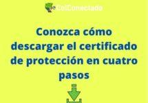Cómo solicitar un certificado en Protección