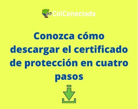 Solicitar certificado en Protección