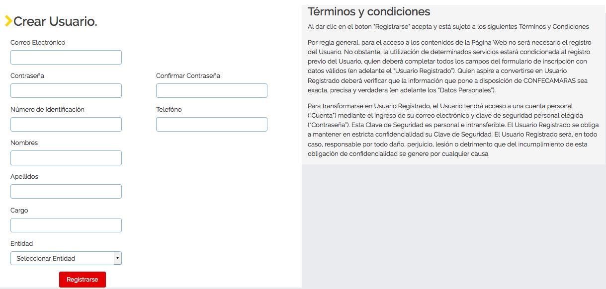 RUES: Consultar si una empresa está inscrita en Colombia 4