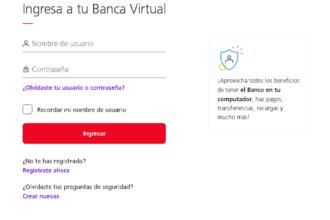 Ingresando a la plataforma virtual