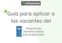 Vacantes en la PNUD: Consulta y postulación en línea