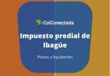 Impuesto predial de Ibagué: Consultar y pagar