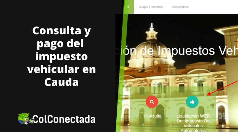 Liquidación impuesto vehículos en Cauca 2020 8