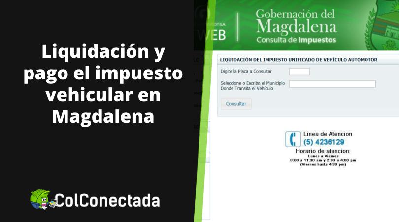 Impuesto vehículos en Magdalena 2020 10