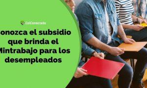 Mintrabajo brindará subsidios por tres meses a los desempleados