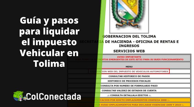 Impuesto de vehículos Tolima por Internet 2021 6