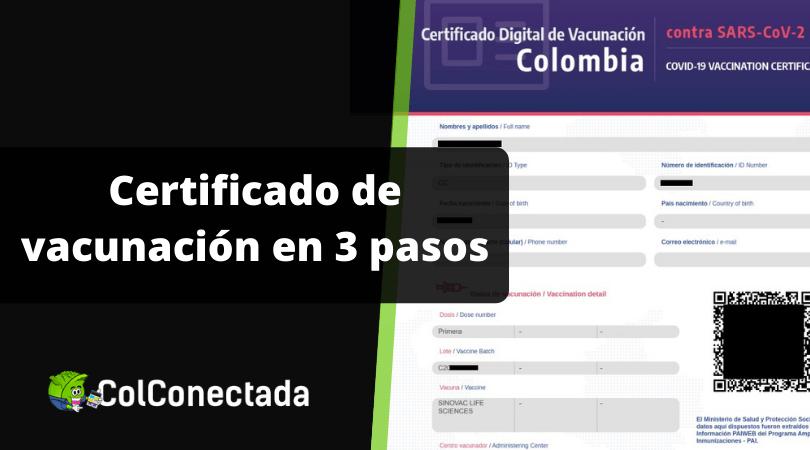 Cómo descargar el certificado de vacunación por Internet 1